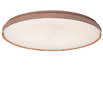 clara wall/ceiling lamp