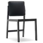 ej4 chameleon chair  -
