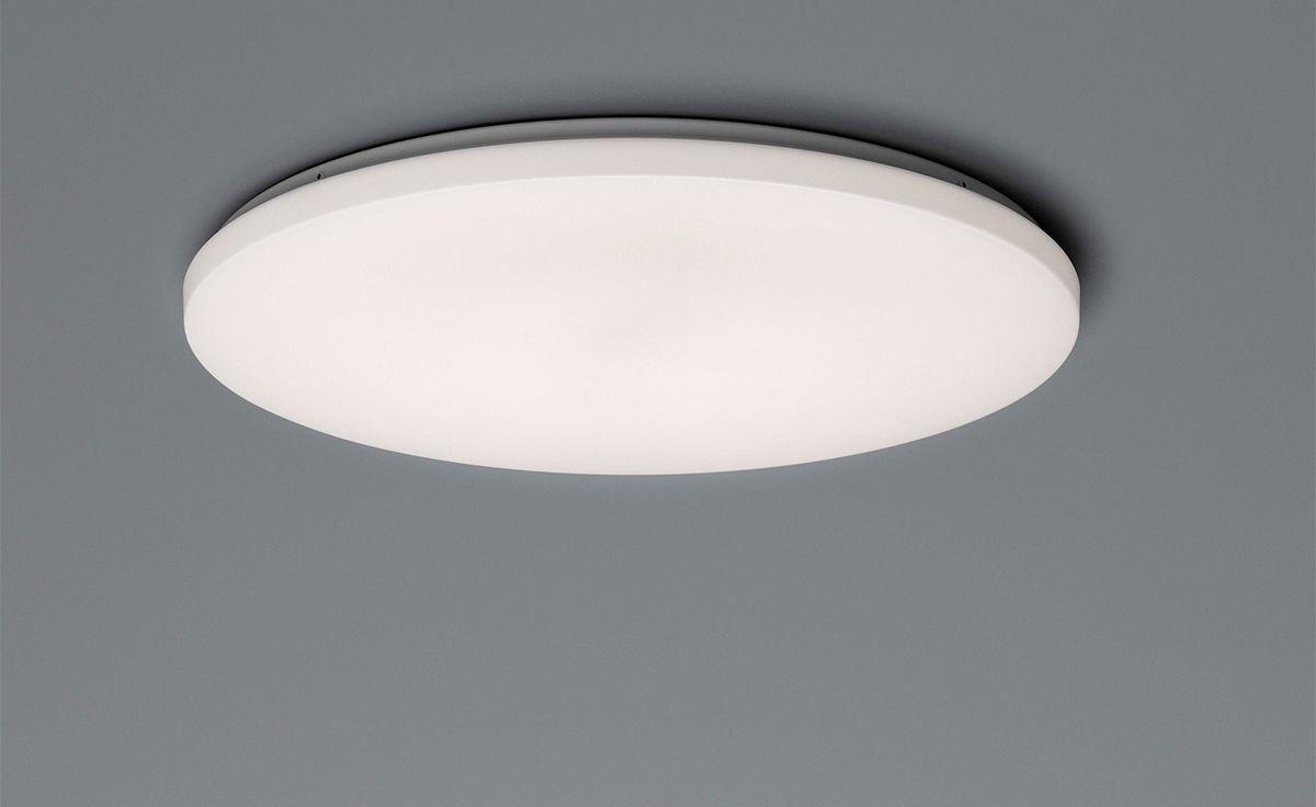 Clara Wall Ceiling Lamp Hivemodern Com