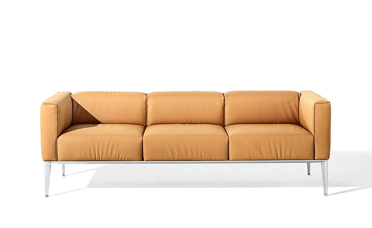 Sean Three Seat Sofa Hivemodern Com