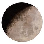 luna rug  -