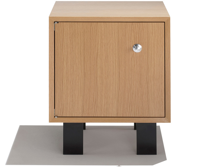 nelson basic cabinet with hinged door