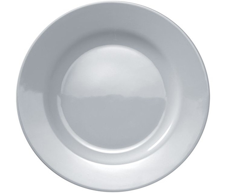 platebowlcup dinner plate set of 4