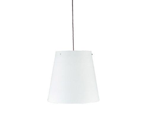 s1853 hanging lamp