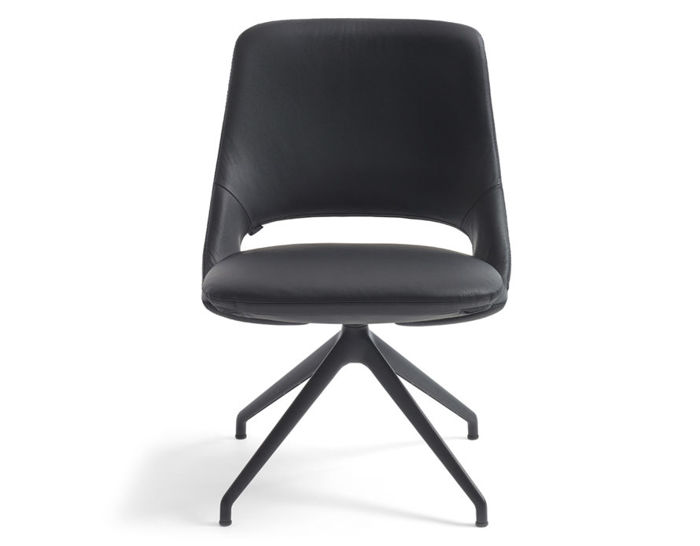 zuma low back chair